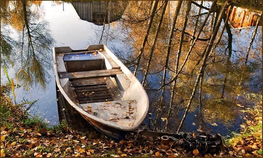 лодка прошуршав в камышах
